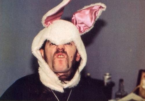 Lemmy Bunny