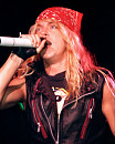 Bret Michaels (2008)